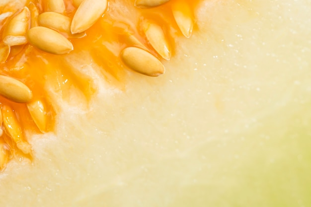 Honeydew melon with seeds Free Photo