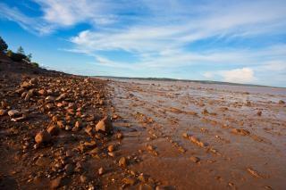 Hopewell beach  cape Free Photo