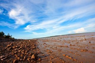 Hopewell beach  line Free Photo