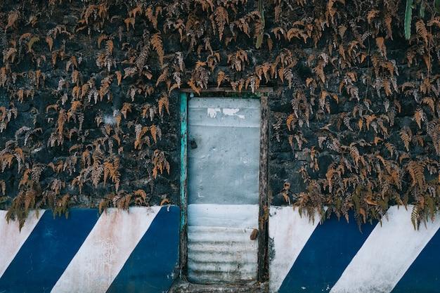 Colpo orizzontale di una vecchia porta di metallo con lo sfondo di foglie secche Foto Gratuite