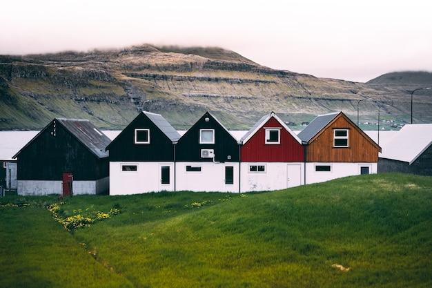 Vista orizzontale di case coloniche colorate sulla costa su un terreno di erba verde Foto Gratuite
