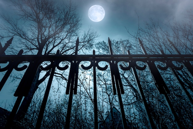 Horror. iron fence and moonlight. nightmare over abandoned house. night time with fog and moon. Premium Photo
