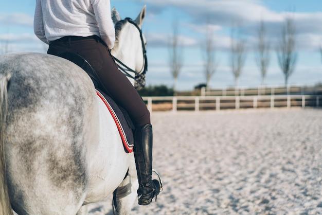 Horse back woman jockey portrait Premium Photo