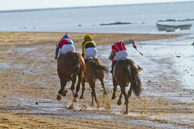 Horse race on sanlucar of barrameda, spain Premium Photo