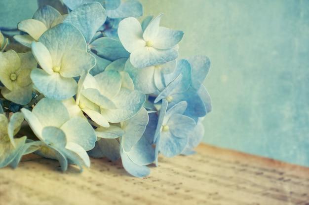 Гортензия цветок Premium Фотографии