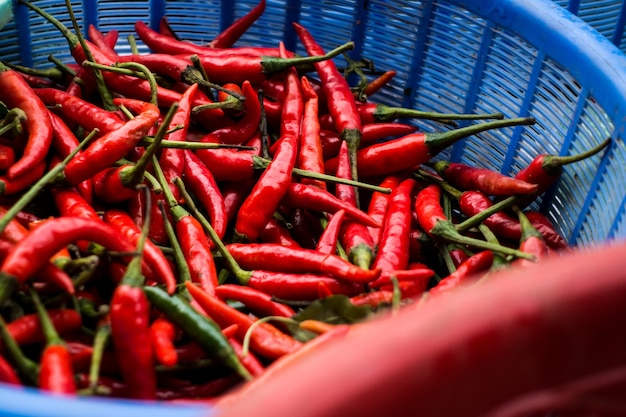 Hot chilli peppers in basket Free Photo