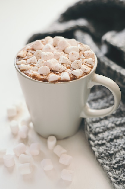 Hot cocoa with marshmallow, cinnamon and spices Premium Photo