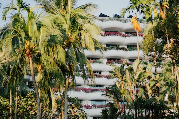 Hotel resort among palm trees in summer time Free Photo