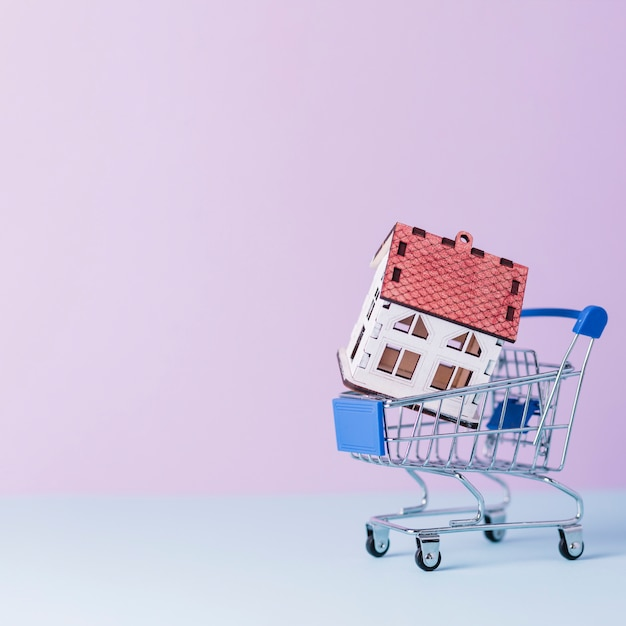 House model in miniature shopping cart Free Photo