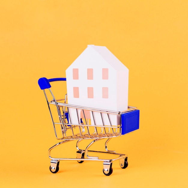 House model inside the shopping cart against yellow backdrop Free Photo