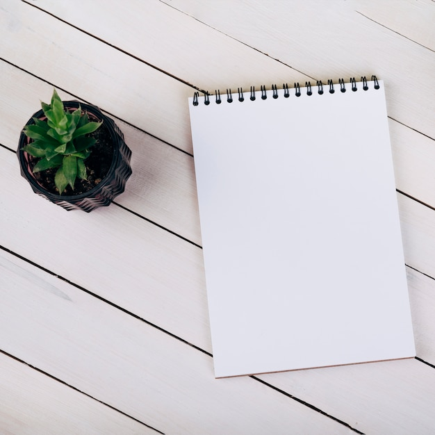Houseplant near the blank spiral notepad on white wooden Free Photo