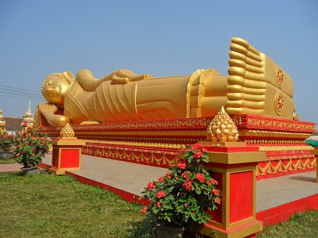 Huge golden reclining buddha image at wat that luang Premium Photo