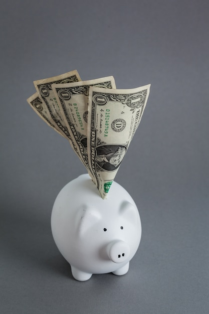 Huge savings in the piggy bank, overflowing with cash Premium Photo