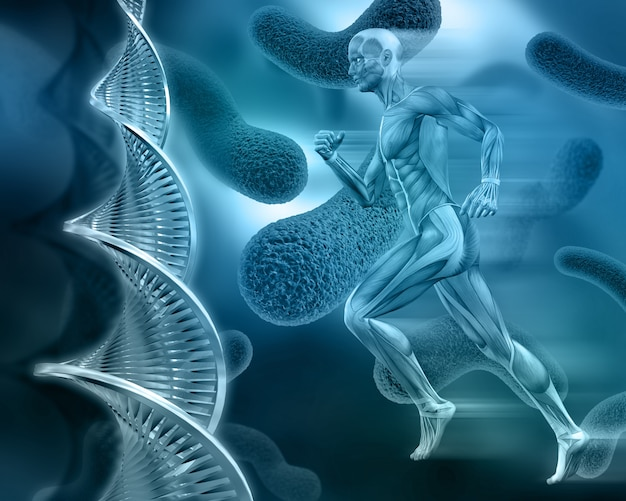Human body with cells in blue tones Free Photo