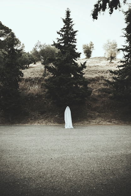 Human in ghost costume standing on road Free Photo
