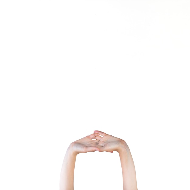 Human hand stretching on white background Free Photo