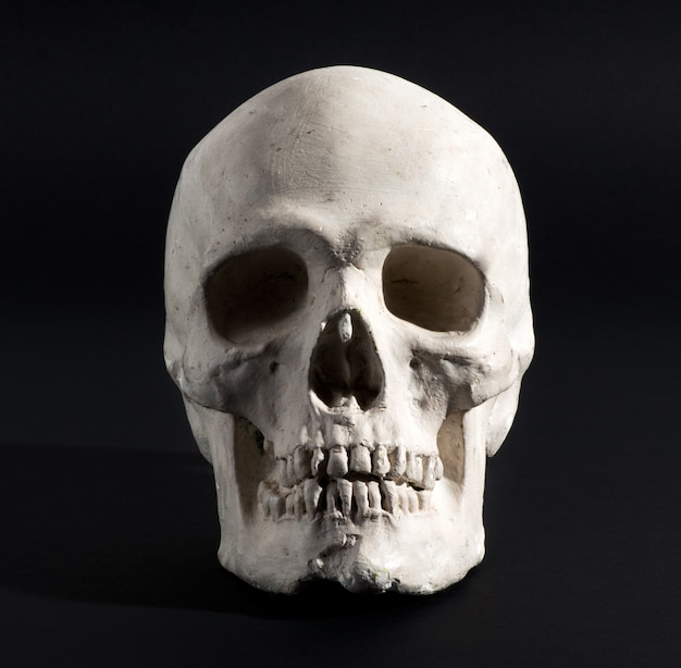 Human skull on a black background Premium Photo
