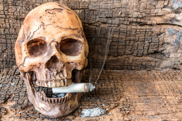 Human skull smoking cigarette with smoke Free Photo