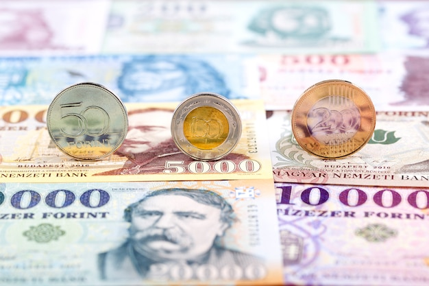 Hungarian forint coins Premium Photo