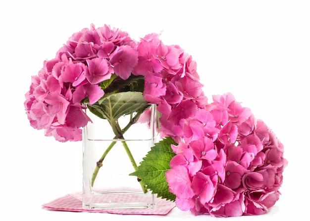 Hydrangea Flowers Inside Glass Vase Photo Premium Download