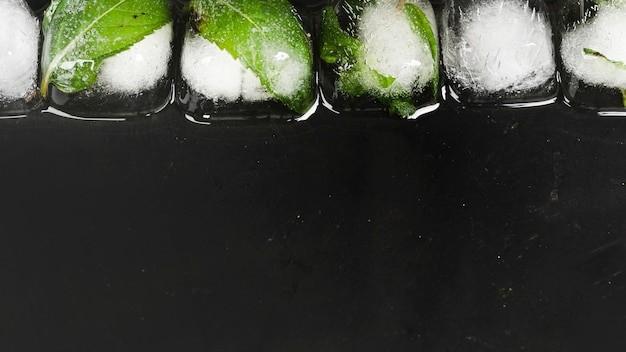 Ice cubes in row Free Photo