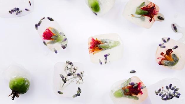 Ice cubes with flowers and seeds Free Photo