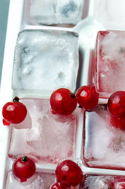 Ice cubes with red currant, close up. Premium Photo