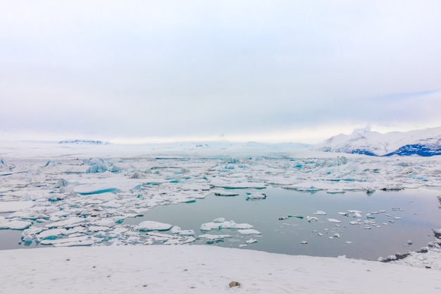 Icebergs in glacier lagoon, iceland . Free Photo