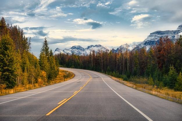 Icefields parkwayの秋の森のロッキーマウンテンとの風光明媚な遠征 Premium写真