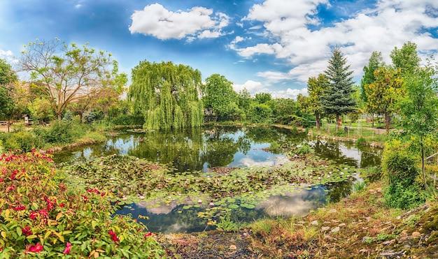 美しい反射の森の中の牧歌的な小さな池 Premium写真