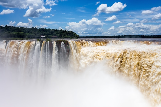 Iguazu falls national park. tropical waterfalls and rainforest landscape Premium Photo