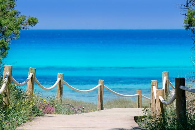 Illetas illetes beachn turquoise formentera island Premium Photo