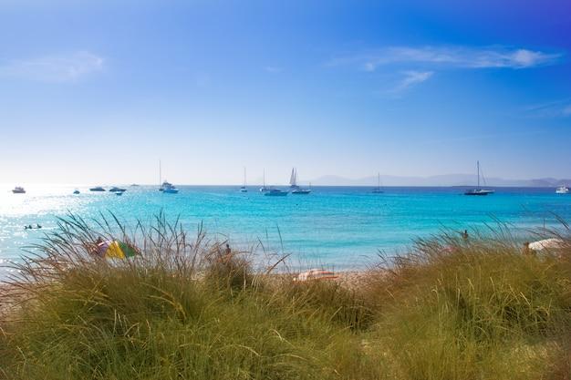 Illetes formentera beach turquoise water Premium Photo
