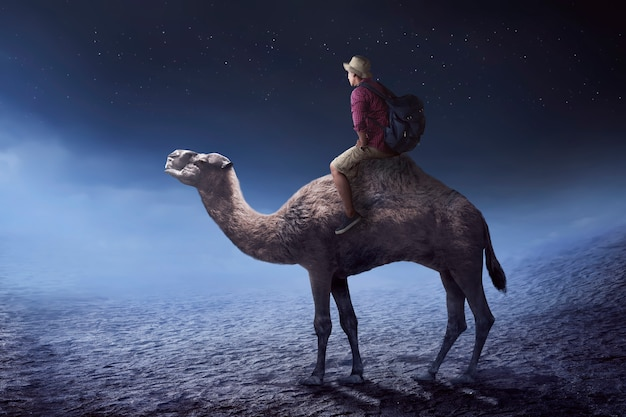 Image of traveler riding camel Premium Photo