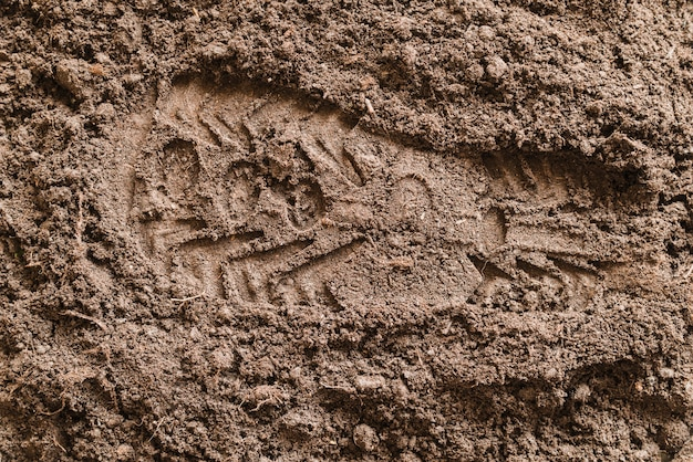 Imprint soles shoe on soil Free Photo