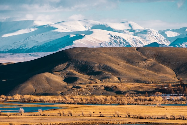 Incredible landscape of the steppe area with lakes and trees smoothly turning into mountains Premium Photo