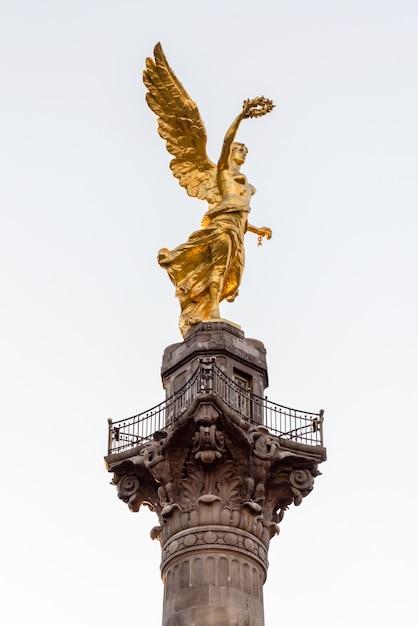 Independence angel Premium Photo