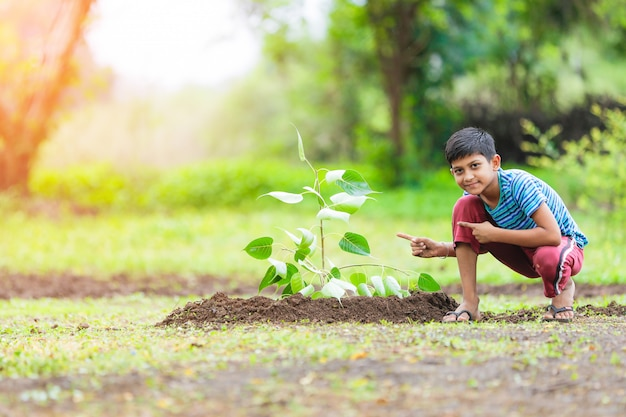 Indian child planting  a tree Premium Photo