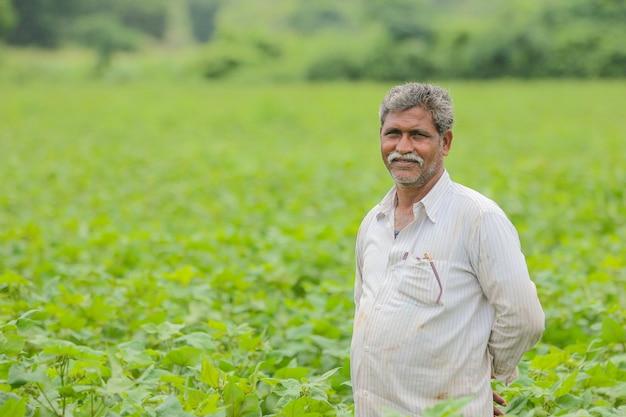 Indian farmer in cotton farm Premium Photo