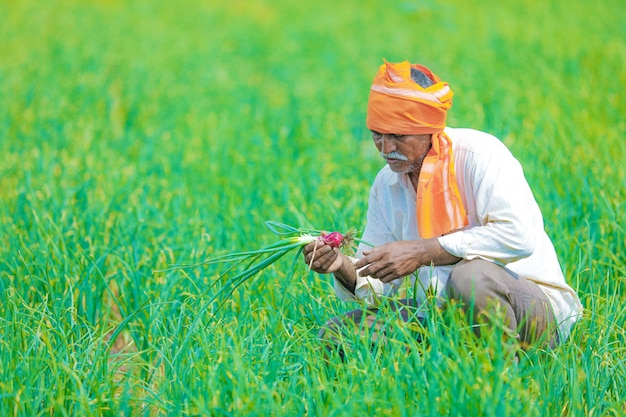 Indian farmer at field Premium Photo