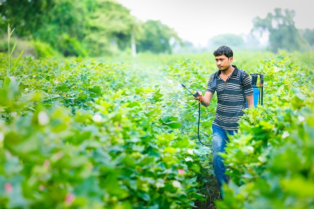 Indian farmer spraying pesticide at cotton field Premium Photo