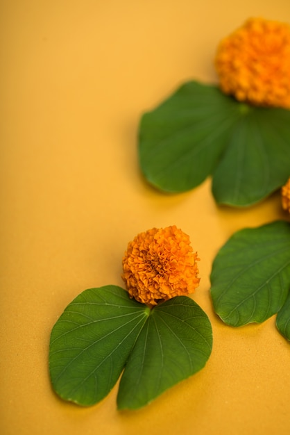 Indian festival dussehra, showing golden leaf (bauhinia racemosa) and marigold flowers on a yellow table. Premium Photo