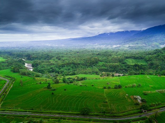Indonesia's natural beauty with aerial photos with misty morning Premium Photo