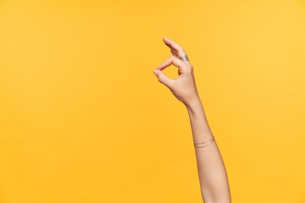 노란색 배경 위에 절연 손가락으로 확인 제스처를 보여주는 동안 장식물과 잘 정리 된 공정한 피부 여성 손의 실내 사진 무료 사진