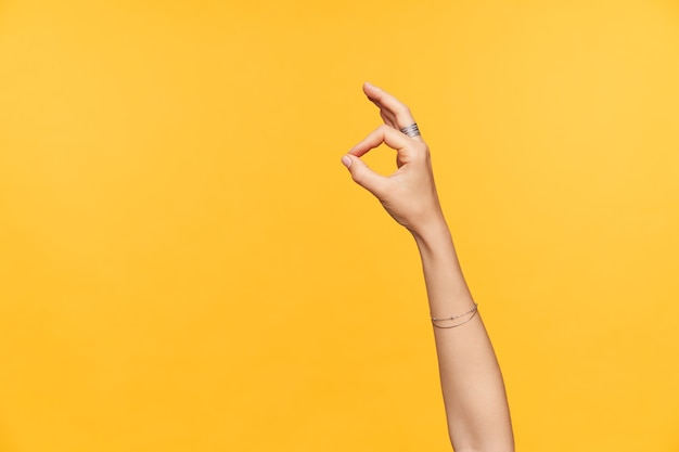 Indoor photo of well-groomed fair-skinned female hands with ornamentals being raised while showing ok gesture with fingers, isolated over yellow background Free Photo