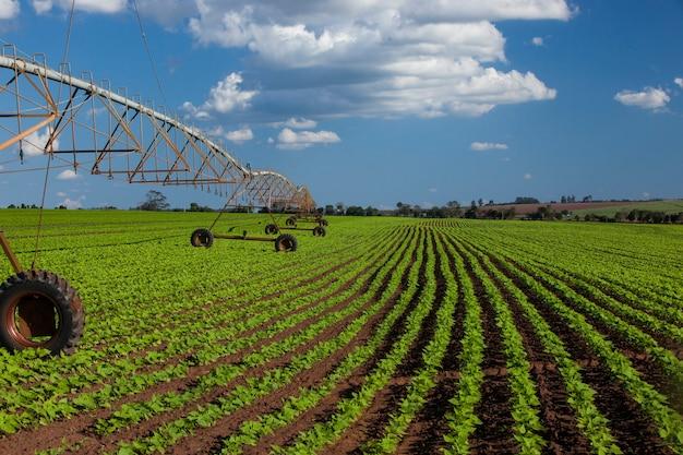 Промышленное ирригационное оборудование на поле фермы под голубым небом в бразилии. сельское хозяйство. Premium Фотографии