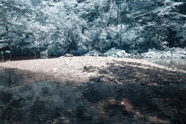 Infrared photograph of the mossy rocks taken in skrad municipality of croatia Free Photo