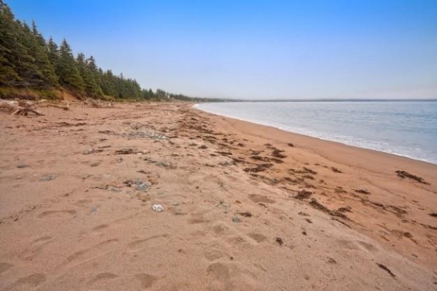 Ingonish beach   hdr Free Photo