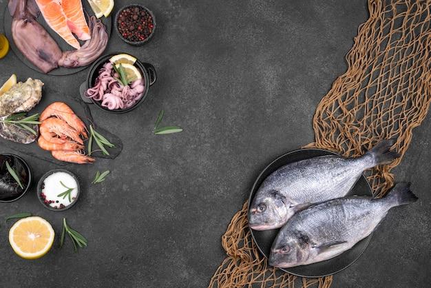 Ingredienti e frutti di mare con spazio copia rete di pesce Foto Gratuite