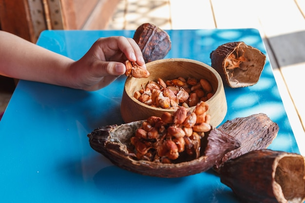Осмотрите какао-бобы на предмет сортировки Premium Фотографии
